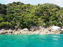 Türkis Blaue Stand Bucht Im Abel Tasman Nationalpark Mit Robbe Auf Felsen , Neuseeland