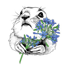 Prairie Dog Portrait With Bright Blue Flowers Agapanthus Umbrellas. Vector Illustration.