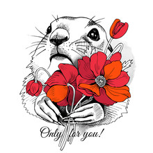 Prairie Dog Portrait With Bright Red Flowers Poppies. Vector Illustration.