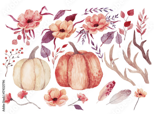 Fotografía  Big watercolor set with pumpkins, flowers and feathers