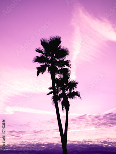 Foto op Aluminium Purper Cotton candy tropical sunset