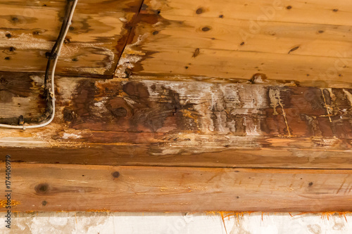 Fotografie, Tablou  Water damaged ceiling and wall