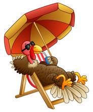 Cartoon Turkey Bird Sitting On...
