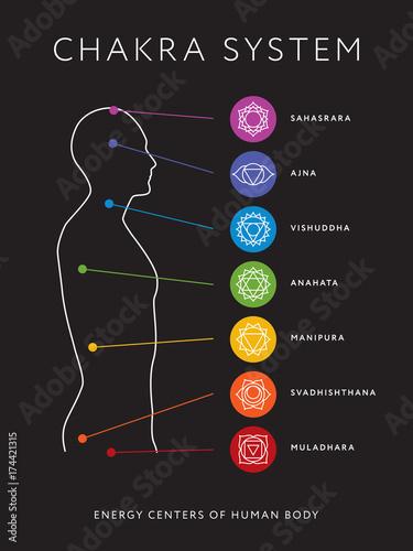 Photo  Chakra system of human body chart