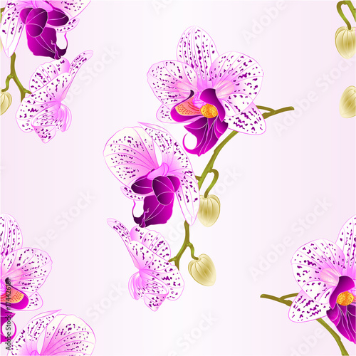 seamless-texture-purple-and-white