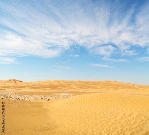 Poster de jardin Desert de sable in oman old desert rub al khali the empty quarter and outdoor sand dune