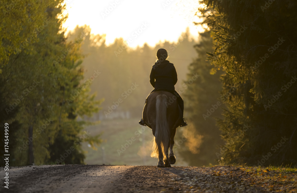 Fototapety, obrazy: Woman horseback riding on the road in the sunset