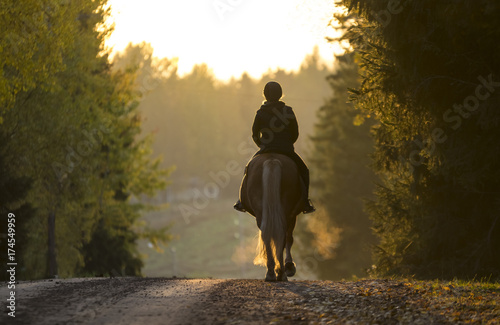 Photo Stands Horseback riding Woman horseback riding on the road in the sunset