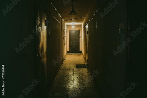 Dark corridor, doors, perspective Wallpaper Mural