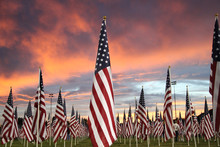 A Patriotic Field Of Flags Backed By A Blazing Sunset.