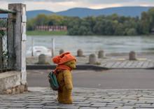 Old Teddy Bear Walking On A Co...