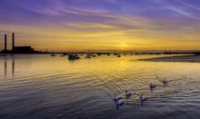 Sunrise On The River Thames Gr...