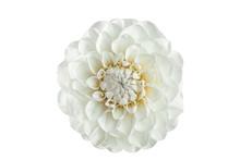 White Dahlia Flower On A White...