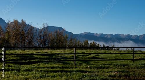 Zdjęcie XXL Zielone pastwiska z mgłą
