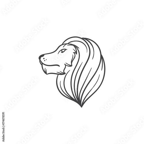 Fototapety, obrazy: lion head vector draw