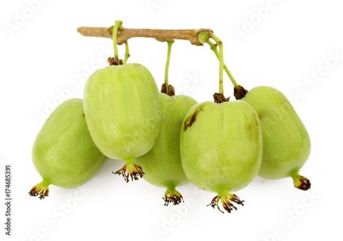 Photo actinidia vitamin berry hardy kiwi