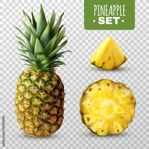 Realistic Pineapple Set Canvas Print