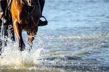 A Horseback Rider With His Horse Galloping At Low Tide
