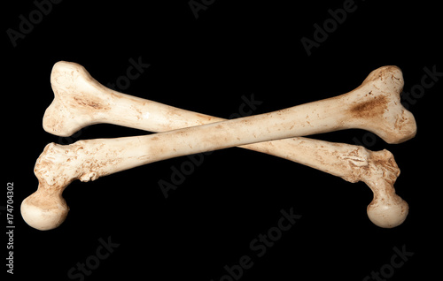 Skeleton bones Wallpaper Mural