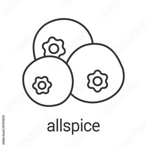 Tela Allspice, pimento linear icon