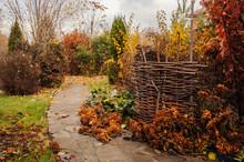 Walking In November Garden. La...