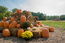 Fall Harvest Display With Pumpkins And Hay On The Farm