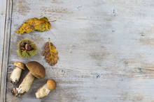 Decorative Autumn Border With Chestnuts, Walnuts, Hazelnuts, Acorns And Leaves On Gray Wooden Background