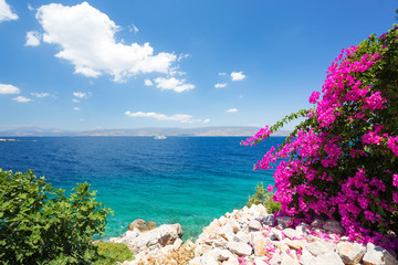 Obraz na SzkleMediterranean landscape. Blue sky and clear waters with beautiful flowers in foreground
