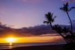 Hawaiian Sunset with Palm Trees