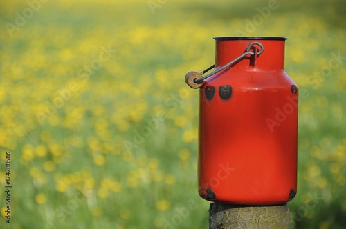 Fotomural Old red milk can or churn in front of a dandelion meadow