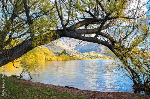 Fototapeta Lakeside of Lake Hayes, znajduje się w dorzeczu Wakatipu w Central Otago, South Island w Nowej Zelandii