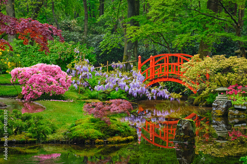 Foto op Plexiglas Groene Japanese garden, Park Clingendael, The Hague, Netherlands