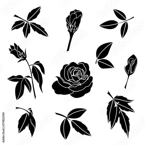 50b8eee15 element of black rose and leaves, decorative flower vector illustration