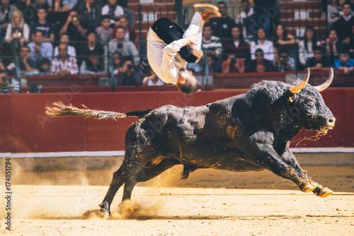 Bullfighter trimmer