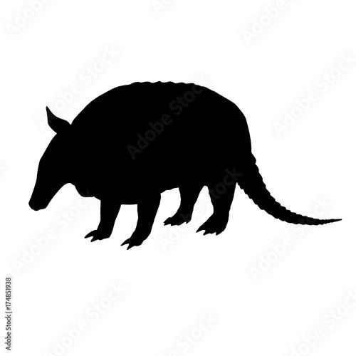 Armadillo silhouette. Black white icon. Vector illustration. Canvas Print