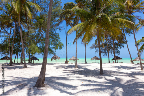 Printed kitchen splashbacks Zanzibar Perfect white sandy beach with palm trees, Paje, Zanzibar, Tanzania