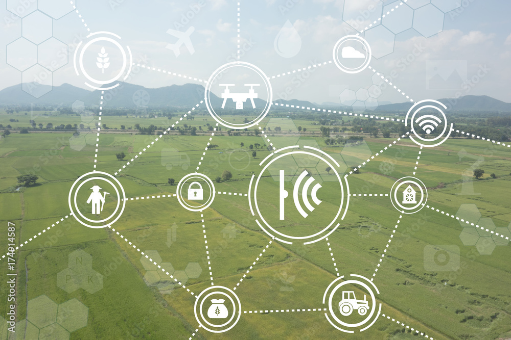 Fototapety, obrazy: internet of things industrial agriculture,smart farming concepts,the various farm technology in the futuristic icon on the field background ict (information communication technology)