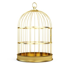 Golden Bird Cage Isolated On W...