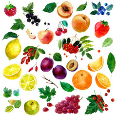 Watercolor illustration, set of watercolor fruit and berries