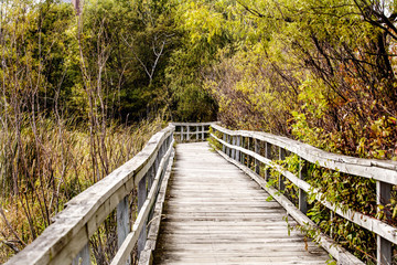 FototapetaLong Bridge of Lochness Park Minnesota