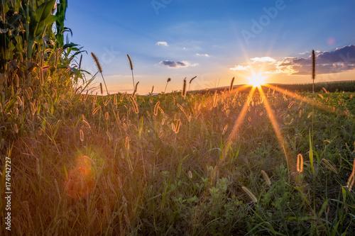 Fototapeta Central Pennsylvania August Sunset