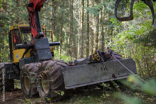Zdjęcie XXL maszyna leśna czarny las Niemcy