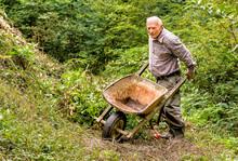 Senior Man With Old Wheelbarro...