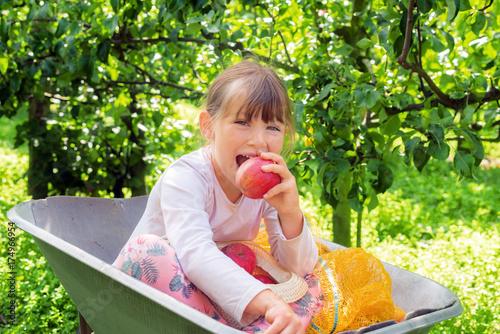 Plakat żuć jabłko