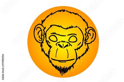 Photo  monkey head and yellow moon