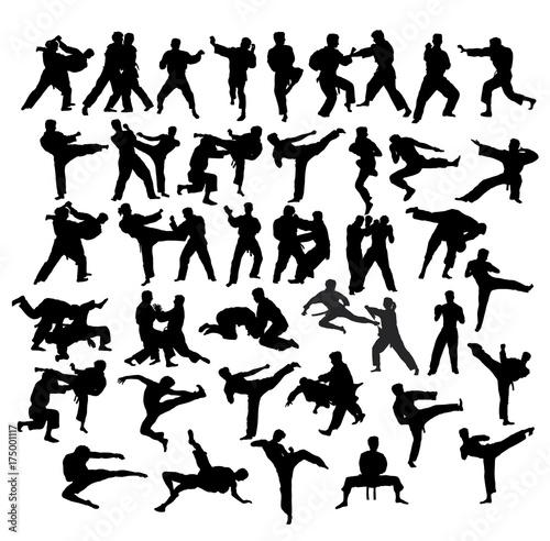 Martial Art Sport Silhouettes, art vector design Wall mural
