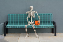 Halloween Skeleton Sitting On ...