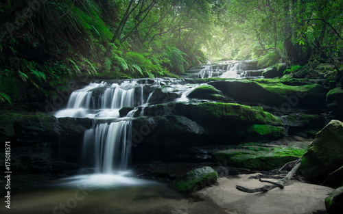Smooth flowing water over rocks of Leura Cascades in the lush rainforest of Blue Mountains, Australia.
