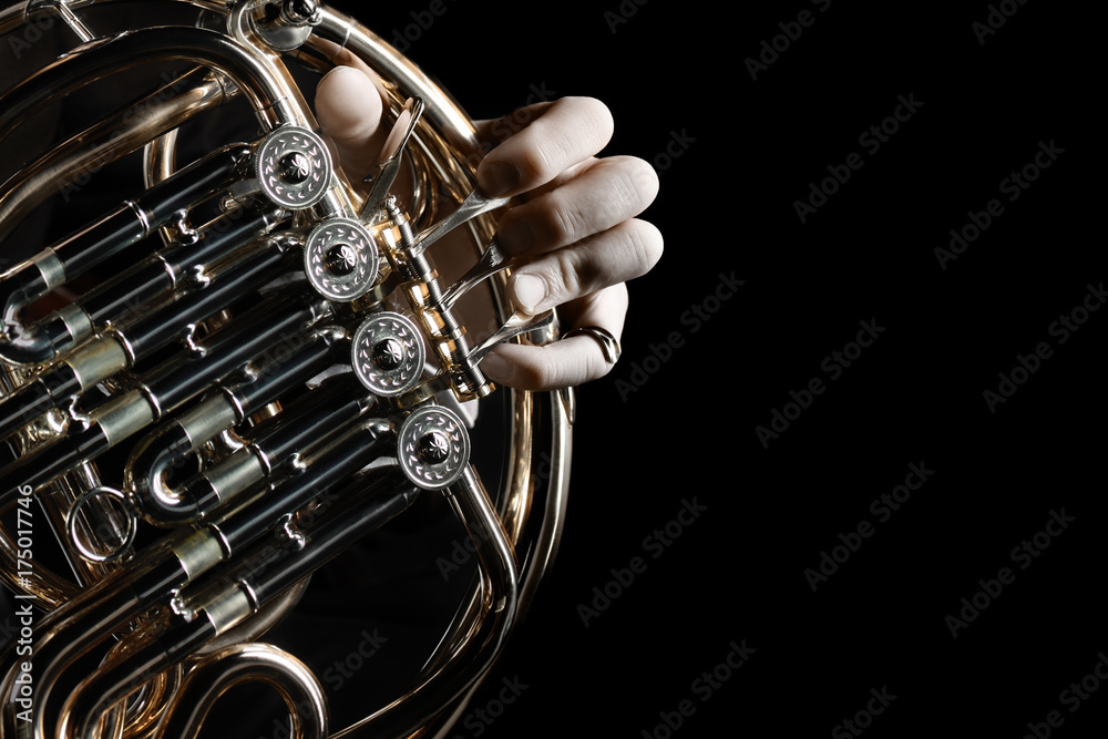 Fototapeta French horn instrument. Hands playing horn player