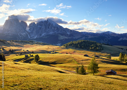 Canvas Prints Honey Alps sunrise green mountain panorama landscape, Alpe di Siusi